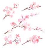 Vattenfärg med trädet i blomning vektor illustrationer