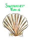 Vattenfärg Shell Vektor Illustrationer