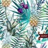 Vattenfärg som är tropisk, ananas som är exotisk, modell Arkivfoton