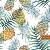 Vattenfärg som är tropisk, ananas som är exotisk, modell Royaltyfri Bild