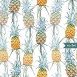 Vattenfärg som är tropisk, ananas som är exotisk, modell Arkivbild