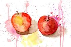 Vattenfärg som målar två äpplen Arkivfoto