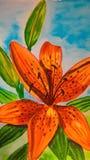 Vattenfärg Tiger Lily på skybluebakgrunden royaltyfri bild