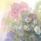 Vattenfärgbakgrund för rosa och vita blommor Arkivbilder