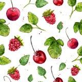 Vattenfärgbakgrund med körsbäret, hallonet och sidor seamless vektor för modell Royaltyfria Foton