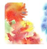 Vattenfärgbakgrund med krysantemumet. vektor illustrationer