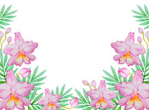Vattenfärgbakgrund med rosa orkidér Arkivbild