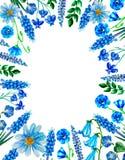 Vattenfärgblomma, blom- illustration, blad och knoppar, sammansättningslagerbana, sömlös bakgrund för att gifta sig hälsnin vektor illustrationer