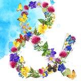 Vattenfärgblomma Sommar blommar vattenfärgbakgrund vektor illustrationer