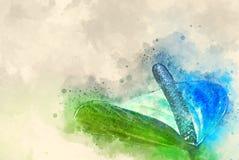 Vattenfärgblommacalla Arkivbild