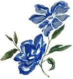 Vattenfärgblommadesign Royaltyfri Bild