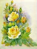 Vattenfärgblommasamling: Ro Royaltyfri Bild