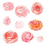 Vattenfärgblommor, blom- samling för vektor Royaltyfri Fotografi