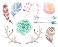 Vattenfärgbohouppsättning av blommor och horn på kronhjort Arkivfoton