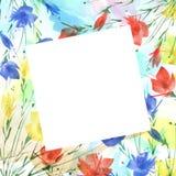 Vattenfärgbukett av blommor vallmo, blåklint royaltyfri illustrationer