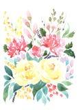 Vattenfärgbukett av olika blommor Arkivfoto
