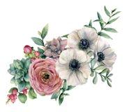 Vattenfärgbukett med suckulenten, ranunculusen och anemonen Den målade handen blommar, eucaliptussidor och den suckulenta filiale stock illustrationer