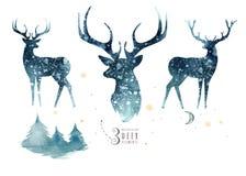 Vattenfärgcloseupstående av blåa hjortar bakgrund isolerad white Hand dragen julindigoblåttillustration stock illustrationer