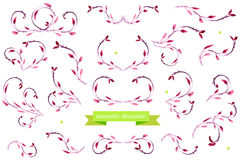 Vattenfärgdesignbeståndsdelar Blom- ramsamling vektor Arkivbild