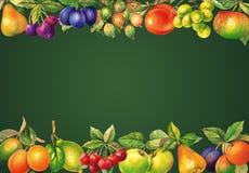 Vattenfärgen bär frukt svart tavla Illustration för bakgrund, hälsningkort, baner, sund mat som lär massmedia inbjudningar och ot vektor illustrationer