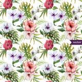 Vattenfärgen hibiskusen, orkidén, vit, gömma i handflatan, tropiskt, modellen, bakgrund, tapet Royaltyfria Foton