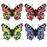 Vattenfärgen målade butterfliesDifferent i färg vektor illustrationer