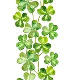 Vattenfärgen målade remsan med trefoilsväxt av släktet Trifolium för celtic ferie Fotografering för Bildbyråer