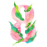 Vattenfärgen nummer 8, blom- stil, pionstylization, isolerade tecken åtta på vit Royaltyfria Foton