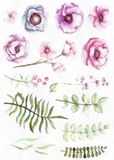 Vattenfärgen och sidor i tappning utformar den blom- samlingen med blommabär Arkivbilder