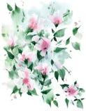 Vattenfärgen skissar Blom- bakgrund för natur royaltyfri fotografi