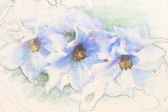 Vattenfärgen skissar målning av riddarsporreblommor royaltyfri illustrationer