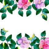 Vattenfärgen som hand-målas från gräsplan, förgrena sig med ljusa färger Royaltyfri Foto