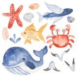 Vattenfärgen ställde in med undervattens- varelser för gulliga tecknad filmungar vektor illustrationer
