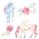 Vattenfärgenhörning och pegasus royaltyfri illustrationer