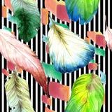 Vattenfärgfågelfjäder från vingen Seamless bakgrund mönstrar Textur för tygtapettryck Arkivbild