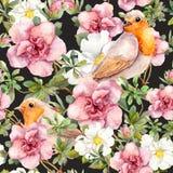 Vattenfärgfåglar och vattenfärgblommor seamless blom- modell Arkivfoto