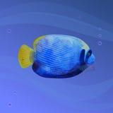 Vattenfärgfisk Arkivfoto