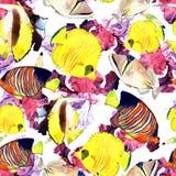 Vattenfärgfisk Illustration för uppsättning för havsfisk royaltyfri illustrationer