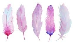 Vattenfärgfjädrar