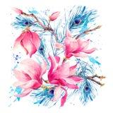 Vattenfärghälsningkort med att blomma blommamagnolian vektor illustrationer