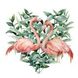 Vattenfärghjärta med rosa flamingo- och eukalyptussidor Räcka den målade rosa flamingo och sidor som isoleras på vit royaltyfri illustrationer