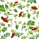 Vattenfärgillustration av bladet och jordgubben, sömlös modell Arkivbild