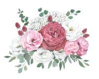 Vattenfärgillustration av buketten med den röda rosen, vanlig hortensia, eukalyptus stock illustrationer