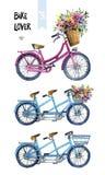 Vattenfärgillustration av cyklar med blommor Royaltyfria Bilder
