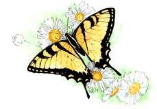 Vattenfärgillustration av den gula fjärilen på vita blommor stock illustrationer