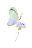 Vattenfärgillustration av en fjäril på en blomma Royaltyfri Bild