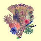 Vattenfärgillustration av huvudet för indisk elefant Arkivbild