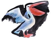 Vattenfärgillustration av pelikan Royaltyfri Fotografi