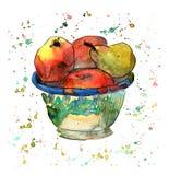 Vattenfärgillustration med äpplen och päronet i bunke vektor illustrationer