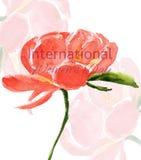 Vattenfärgillustration med blomman stock illustrationer